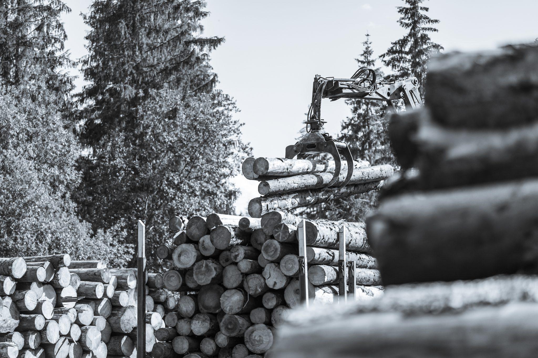 brennholz4you Produktion - Ihr zuverlässiger Lieferant für Brennholz